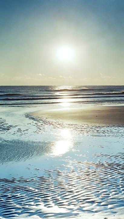 afternoon-tide-pool